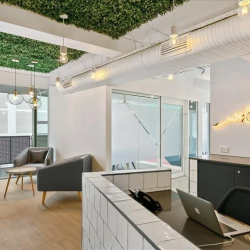 Level 6, 241 Commonwealth Street , Surry Hills serviced offices